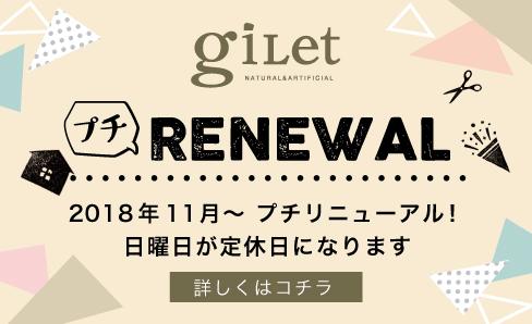 bnr_renewal